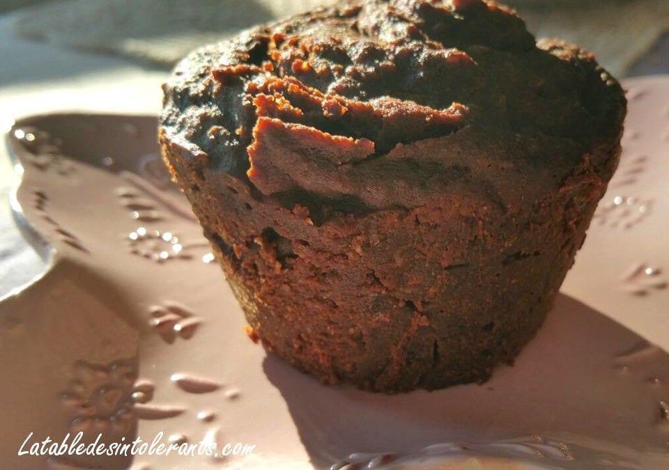 MI-CUIT AU CHOCOLAT sans gluten, sans lait, avec ou sans sucre, sans levure
