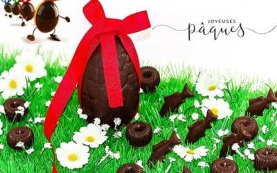 CHOCOLATS DE PÂQUES sans gluten, sans lactose, avec ou sans sucre